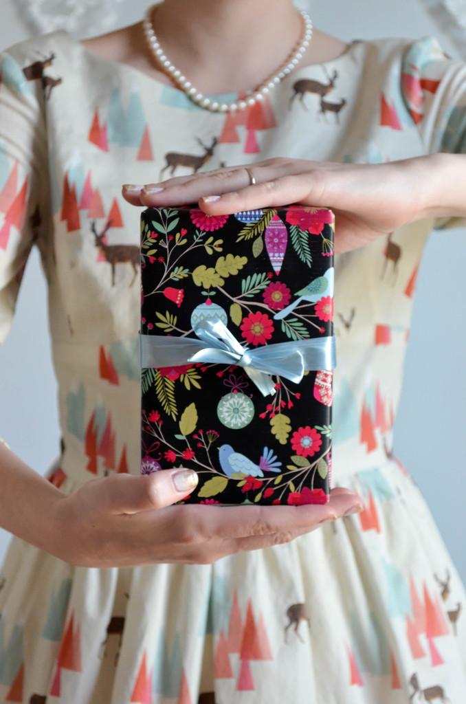 Dear Ones Dress \\ Sophster-Toaster Blog