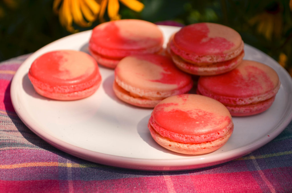 Peaches & Cream Macarons | Sophster-Toaster