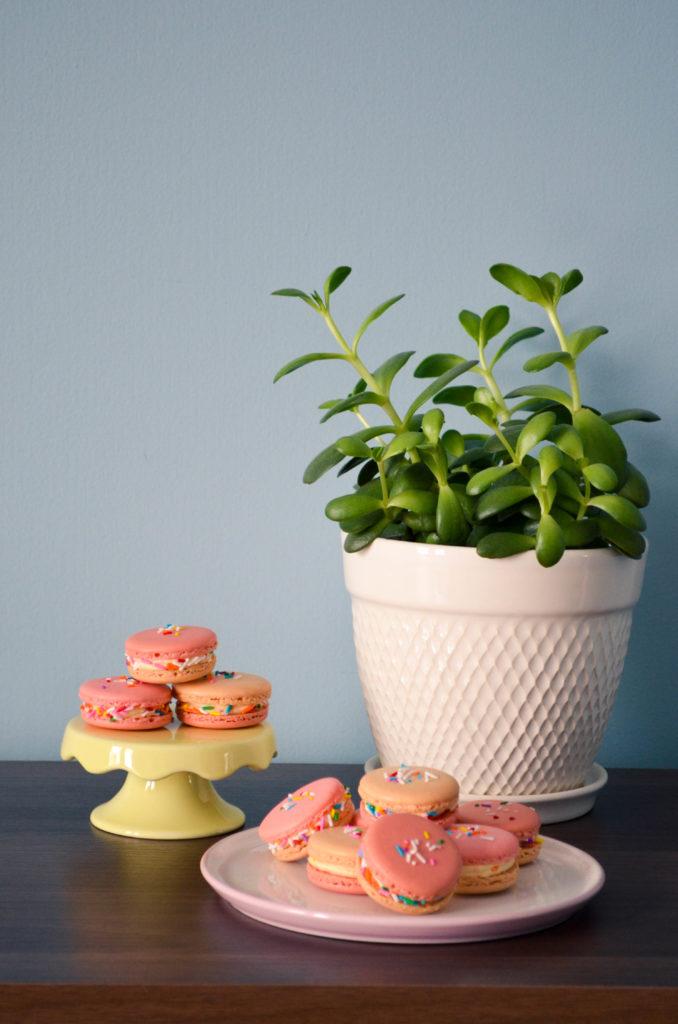 Birthday Cake Macarons | Sophster-Toaster