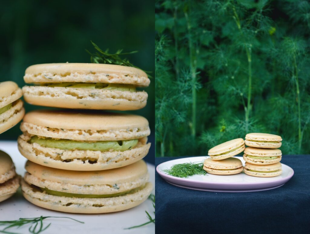 Sweet Dill Macarons | Sophster-Toaster