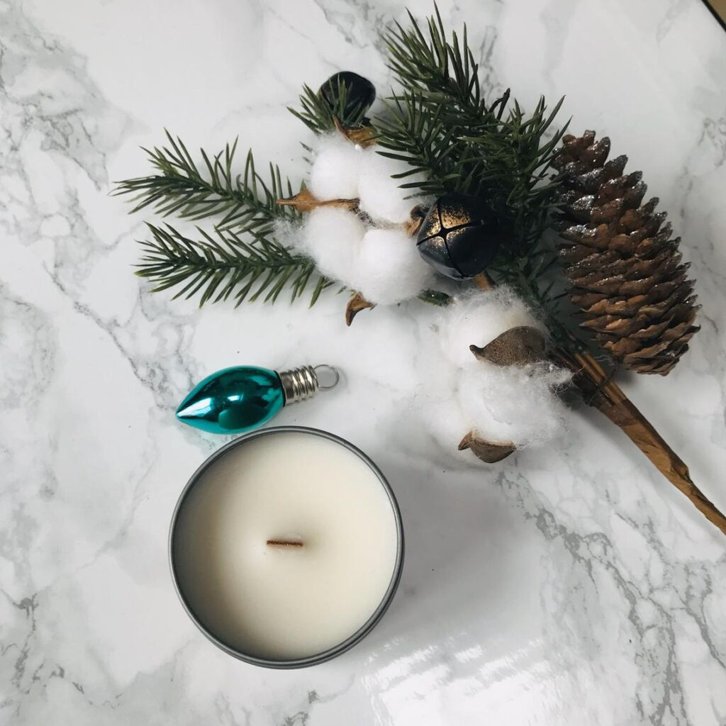 Wild Serenity | Small Business Gift Guide - Holiday 2020 | Sophster-Toaster